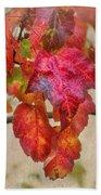 Maple Colors Beach Sheet