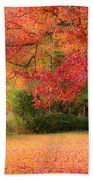 Maple In Red And Orange Beach Towel