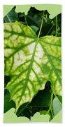 Maple Leaf In The Laurel Beach Towel