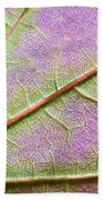 Maple Leaf Macro Beach Towel