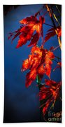Maple Leaves Shadows Beach Towel