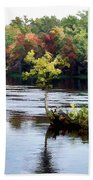 Maple Tree On A Rocky Island - V2 Beach Towel