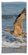 Marbled Godwit Taking Off On Beach Beach Towel