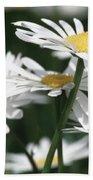Marguerite Blossom Beach Towel