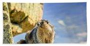 Marmot Beach Towel