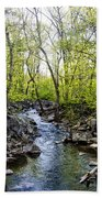 Marsh Creek In Spring Beach Towel