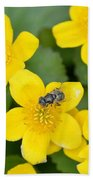Marsh Marigold Beach Towel