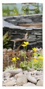 Marsh Marigolds Beach Towel