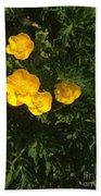 Martha's Flowers Beach Towel