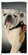 Mascot Of The United States Marine Corps Beach Towel