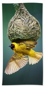 Masked Weaver At Nest Beach Towel by Johan Swanepoel
