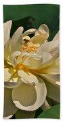 Mature Lotus Flower And Cute Hovering Honeybee Beach Towel