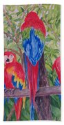 Maui Macaws Beach Towel