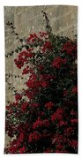 Mdina Beach Towel