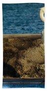 Me And My Shadow Beach Towel