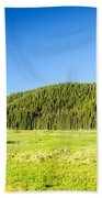 Meadow And Forest Beach Towel
