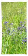 Meadow Lupine Beach Towel