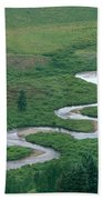 Meandering East River Beach Towel