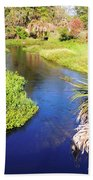 Meandering Stream Beach Towel