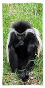 Meditating Monkey Beach Towel