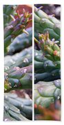 Medusa Succulent In Stereo Beach Towel
