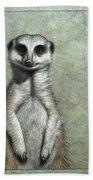 Meerkat Beach Towel by James W Johnson
