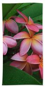 Melia Hae Hawaii Pink Tropical Plumeria Keanae Beach Towel
