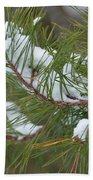 Melting Snow In The Pines Beach Towel
