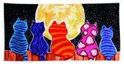 Meowing At Midnight Beach Towel