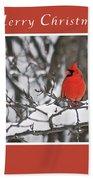 Merry Christmas Male Cardinal Beach Towel