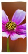 Merry Cosmos Floral Beach Towel