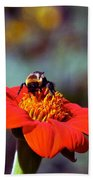 Mexican Sunflower Open House Party Time Beach Towel