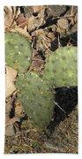 Mickey Mouse Cactus Beach Towel