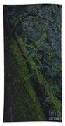 Midnight Tree By Jrr Beach Towel