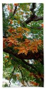 Mighty Fall Oak #1 Beach Towel