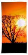 Mighty Oak Sunset Beach Towel