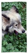 Miley The Husky With Blue And Brown Eyes - Impressionist Artistic Work Beach Towel