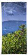 Milkweed Plants Along The Blue Ridge Parkway Beach Towel