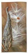 Milkweed Pod And Seeds Beach Towel
