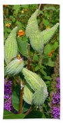 Milkweed Pods Beach Towel