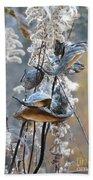 Milkweeds In Autumn Beach Towel