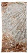 Million Years Ago 1 Beach Towel