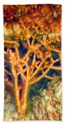 Mineral Branches Hot Springs Beach Towel