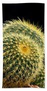 Mini Cactus In A Pot Beach Towel
