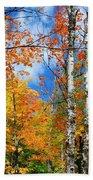 Minnesota Autumn Foliage Beach Towel
