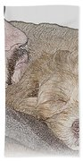 Miracles With Paws Beach Towel