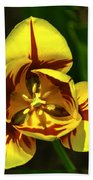 Mirrored Tulip Time Beach Towel