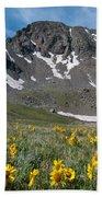 Missouri Mountain And Wildflower Landscape Beach Towel