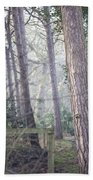 Mist Through The Trees Beach Towel