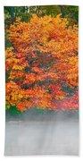 Misty Fall Tree Beach Towel